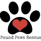Pound Paws Rescue's avatar
