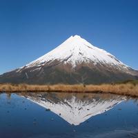 Te Whenua Tōmuri Trust