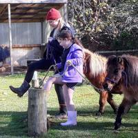 Hope Rising Farm Charitable Trust