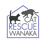 Cat Rescue Wanaka 's avatar