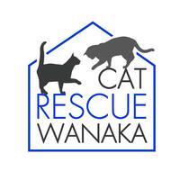 Cat Rescue Wanaka
