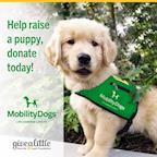 Mobility Assistance Dogs Trust's avatar