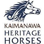 Kaimanawa Heritage Horses's avatar