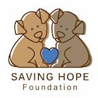 Saving Hope Foundation's avatar