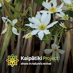 Kaipatiki Project's avatar