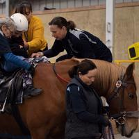 Tauranga Riding for the Disabled