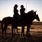 New Zealand Mounted Rifles Charitable Trust's avatar