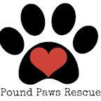 Pound Paws Rescue's avatar