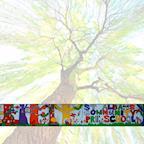 St Albans Community Preschool's avatar