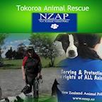 NZAP New Zealand Animal-Police's avatar