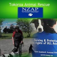 NZAP New Zealand Animal-Police
