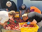 We nourish the Hawke's Bay community using rescued food.'s avatar