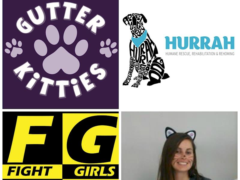 Fighting For Cats And Dogs Givealittle