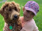 Help Gift a Kiwi Family a Therapy Dog's avatar