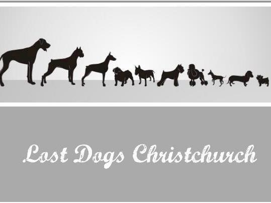 Dog Rescue Chch